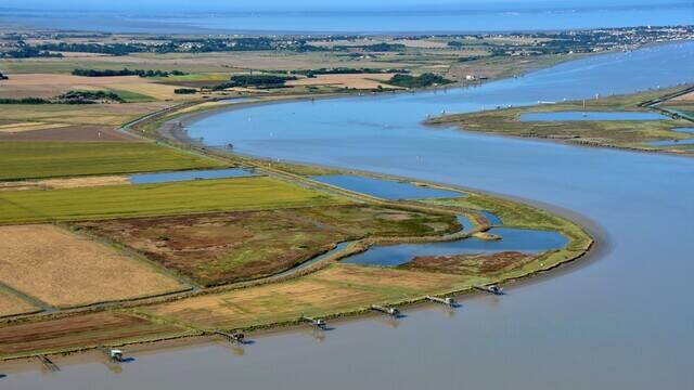 Estuary of the Charente - ©FDHPA17