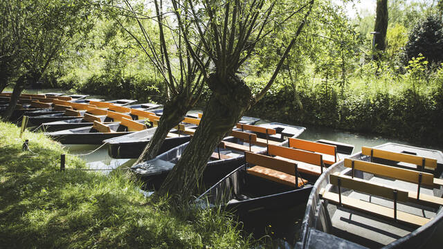 Boats on the canals of the Marais Poitevin