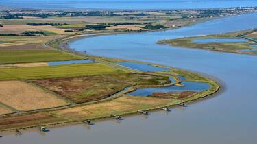 Estuary of the Charente - ©FDHPA17